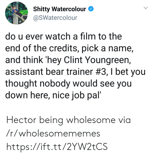 U Ever: Shitty Watercolour  @SWatercolour  do u ever watch a film to the  end of the credits, pick a name  and think 'hey Clint Youngreen,  assistant bear trainer #3 , I bet you  thought nobody would see you  down here, nice job pal' Hector being wholesome via /r/wholesomememes https://ift.tt/2YW2tCS