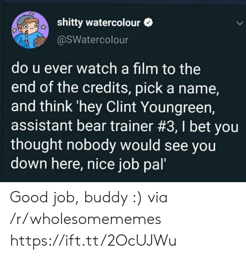 Do U: shitty watercolour  @SWatercolour  do u ever watch a film to the  end of the credits, pick a name,  and think 'hey Clint Youngreen,  assistant bear trainer #3, I bet you  thought nobody would see you  down here, nice job pal' Good job, buddy :) via /r/wholesomememes https://ift.tt/2OcUJWu