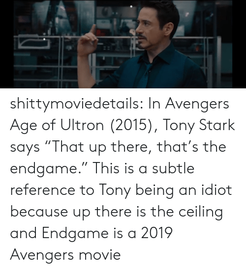 "avengers age of ultron: shittymoviedetails:  In Avengers Age of Ultron (2015), Tony Stark says ""That up there, that's the endgame."" This is a subtle reference to Tony being an idiot because up there is the ceiling and Endgame is a 2019 Avengers movie"