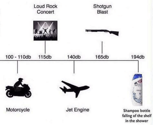 shotgun: Shotgun  Blast  Loud Rock  Concert  100 110db 115db  140db  165db  194db  Motorcycle  Jet Engine  Shampoo bottle  falling of the shelf  in the shower