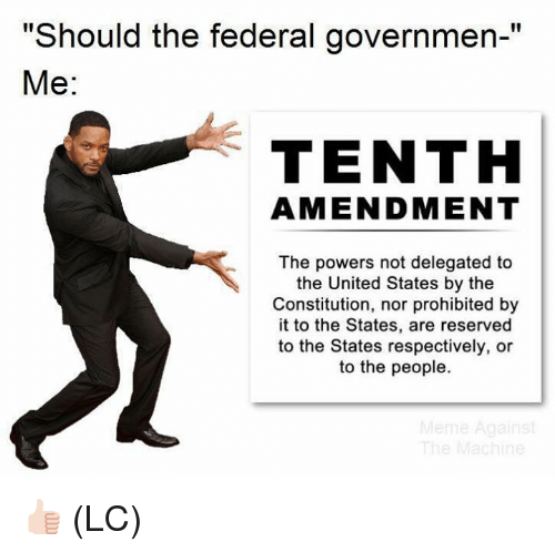 "respectively: ""Should the federal governmen-""  Me:  TENTH  AMENDMENT  The powers not delegated to  the United States by the  Constitution, nor prohibited by  it to the States, are reserved  to the States respectively, or  to the people. 👍🏻 (LC)"