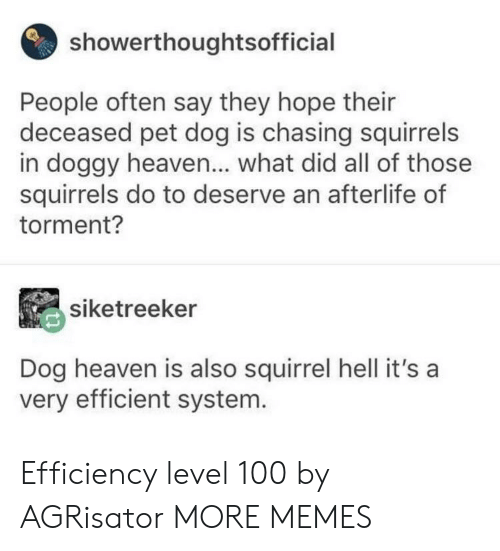 efficient: showerthoughtsofficial  People often say they hope their  deceased pet dog is chasing squirrels  in doggy heaven... what did all of those  squirrels do to deserve an afterlife of  torment?  siketreeker  Dog heaven is also squirrel hell it's a  very efficient system. Efficiency level 100 by AGRisator MORE MEMES
