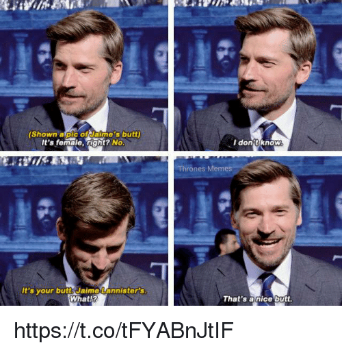 Butt, Nice, and Thrones: (Shown alpic ofdaime's butt)  It's female, right? No  don tknoW  Thrones Mem  It's your butt Jaime Lannister's  What!?  That's a nice butt. https://t.co/tFYABnJtIF