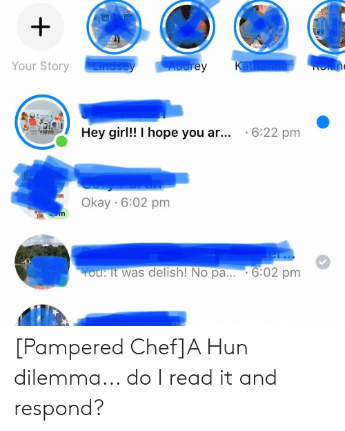 Chef, Girl, and Okay: shrivn  Lindsey  Audrey  Katherine  Your Story  Rolan  Hey girl!! I hope you ar... .6:22 pm  KE  Okay 6:02 pm  Zom  er..  6:02 pm  You: It was delish! No pa... [Pampered Chef]A Hun dilemma... do I read it and respond?