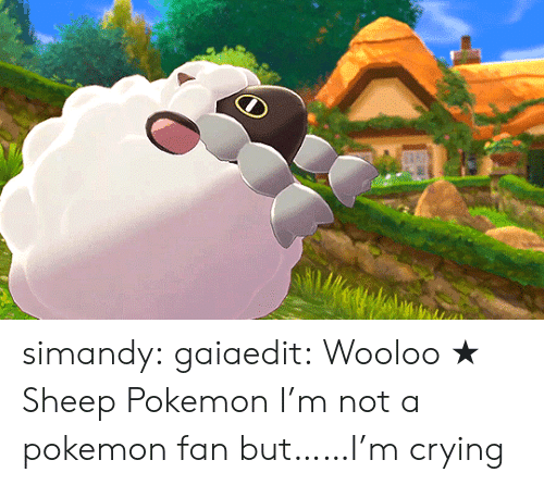 Crying, Pokemon, and Tumblr: simandy:  gaiaedit:  Wooloo★ Sheep Pokemon  I'm not a pokemon fan but……I'm crying