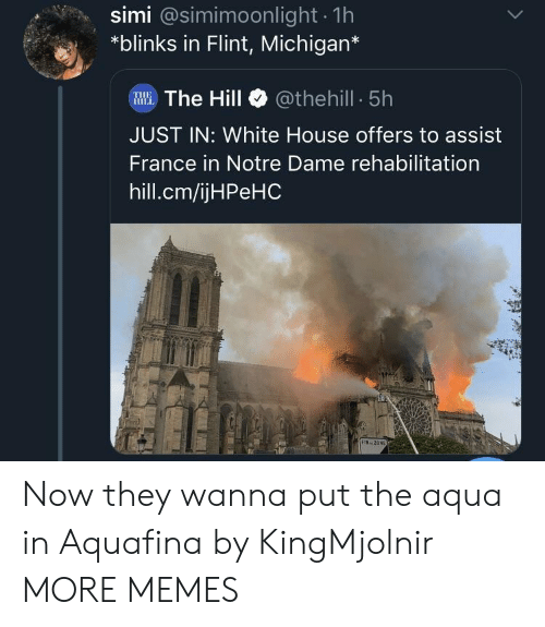 flint: simi @simimoonlight 1h  *blinks in Flint, Michigan*  WWE.The Hill @thehill 5h  JUST IN: White House offers to assist  France in Notre Dame rehabilitation  hill.cm/ijHPeHC  FIN ZON Now they wanna put the aqua in Aquafina by KingMjolnir MORE MEMES