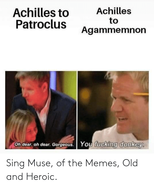 The Memes: Sing Muse, of the Memes, Old and Heroic.