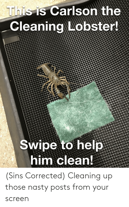 Posts: (Sins Corrected) Cleaning up those nasty posts from your screen