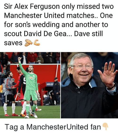 david de gea: Sir Alex Ferguson only missed two  Manchester United matches.. One  for son's wedding and another to  scout David De Gea... Dave still  savesC Tag a ManchesterUnited fan👇🏼