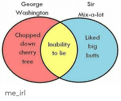 George Washington, Tree, and Irl: Sir  George  Washington  Mix-a-lot  Chopped  down Inability  cherry  tree  Liked  big  butts  to lie me_irl