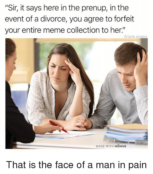 """meme collection: """"Sir, it says here in the prenup, in the  event of a divorce, you agree to forfeit  your entire meme collection to her.""""  @tank.sinatra  MADE WITH MOMUS That is the face of a man in pain"""