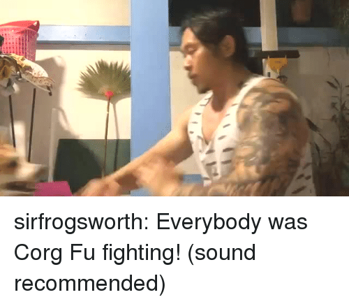 Corg: sirfrogsworth: Everybody was Corg Fu fighting! (sound recommended)