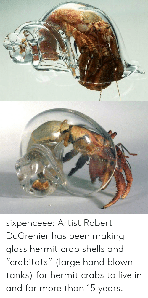 """Sixpenceee: sixpenceee:  ArtistRobert DuGrenier has been making glass hermit crab shells and """"crabitats"""" (large hand blown tanks) for hermit crabs to live in and for more than 15 years."""