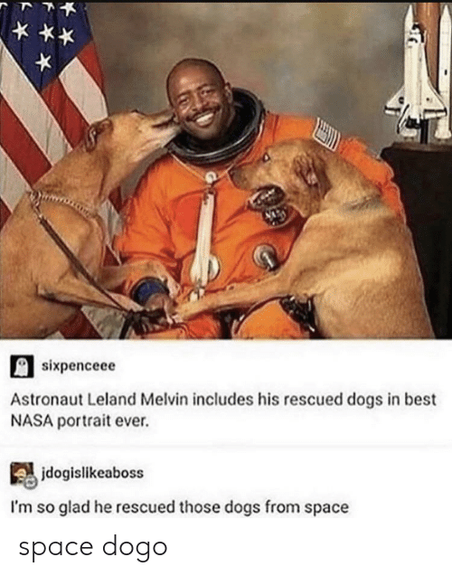 Dogs, Nasa, and Best: sixpenceee  Astronaut Leland Melvin includes his rescued dogs in best  NASA portrait ever.  jdogislikeaboss  I'm so glad he rescued those dogs from space space dogo