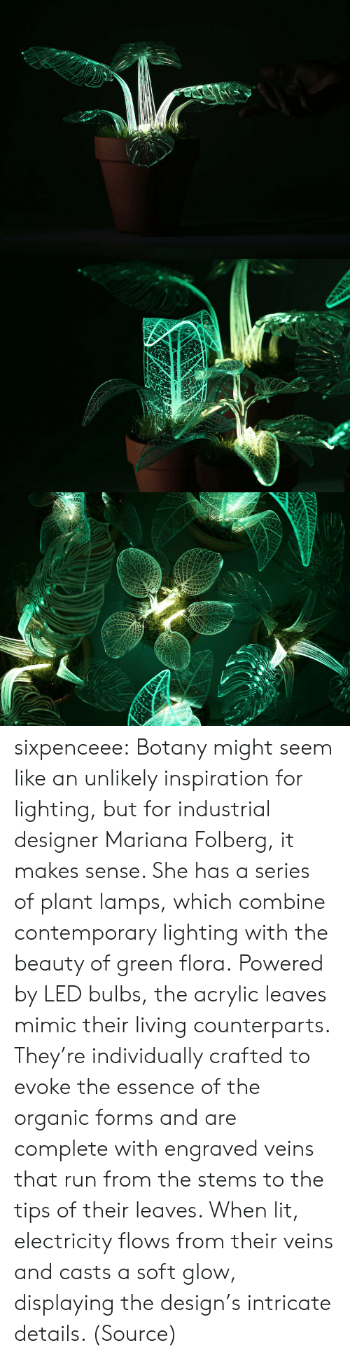 Mariana: sixpenceee:  Botany might seem like an unlikely inspiration for lighting, but for industrial designer Mariana Folberg, it makes sense. She has a series of plant lamps, which combine contemporary lighting with the beauty of green flora. Powered by LED bulbs, the acrylic leaves mimic their living counterparts. They're individually crafted to evoke the essence of the organic forms and are complete with engraved veins that run from the stems to the tips of their leaves. When lit, electricity flows from their veins and casts a soft glow, displaying the design's intricate details. (Source)