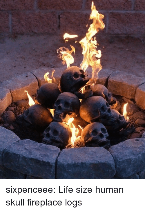 life size: sixpenceee:   Life size human skull fireplace logs