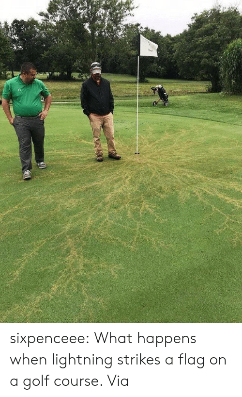 Tumblr, Wizards of Waverly Place, and Blog: sixpenceee:  What happens when lightning strikes a flag on a golf course. Via