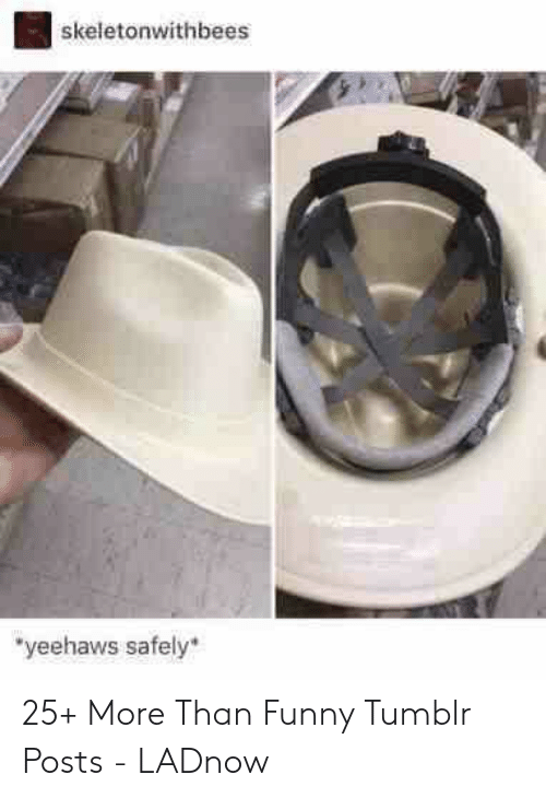 "Funny, Tumblr, and More: skeletonwithbees  ""yeehaws safely 25+ More Than Funny Tumblr Posts - LADnow"