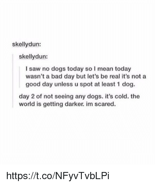 Being Real: skellydun:  skellydun:  I saw no dogs today so I mean today  wasn't a bad day but let's be real it's not a  good day unless u spot at least 1 dog.  day 2 of not seeing any dogs. it's cold. the  world is getting darker. im scared. https://t.co/NFyvTvbLPi