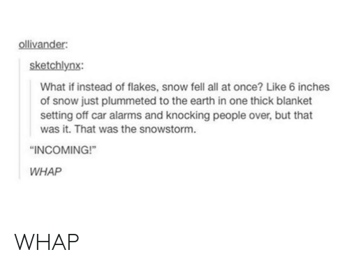 Whap: sketchlynx:  What if instead of flakes, snow fell all at once? Like 6 inches  of snow just plummeted to the earth in one thick blanket  setting off car alarms and knocking people over, but that  was it. That was the snowstorm.  INCOMING!  WHAP WHAP