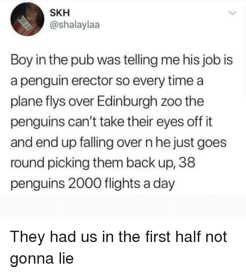 Falling Over: SKH  @shalaylaa  Boy in the pub was telling me his job is  a penguin erector so every time a  plane flys over Edinburgh zoo the  penguins can't take their eyes off it  and end up falling over n he just goes  round picking them back up, 38  penguins 2000 flights a day They had us in the first half not gonna lie