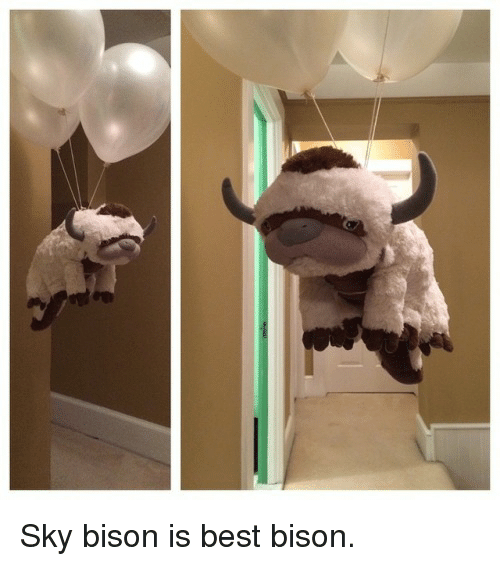 bison: Sky bison is best bison.