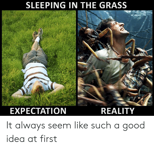 Expectation Reality: SLEEPING IN THE GRASS  EXPECTATION  REALITY It always seem like such a good idea at first
