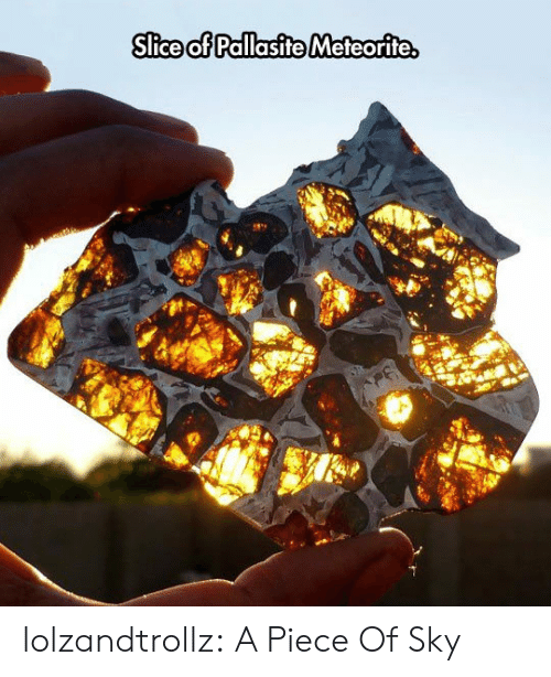 Tumblr, Blog, and Com: Slice of Pallasite Meteorite. lolzandtrollz:  A Piece Of Sky