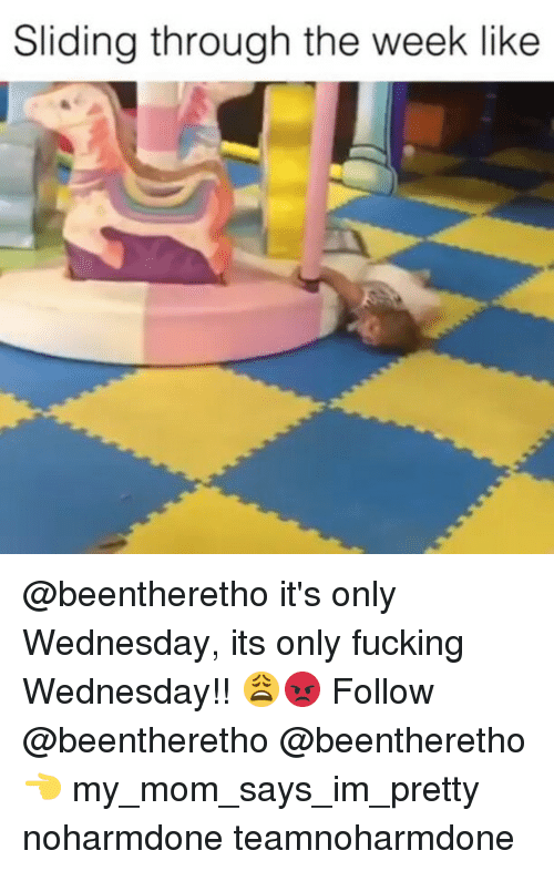 Fucking, Memes, and Wednesday: Sliding through the week like @beentheretho it's only Wednesday, its only fucking Wednesday!! 😩😡 Follow @beentheretho @beentheretho 👈 my_mom_says_im_pretty noharmdone teamnoharmdone