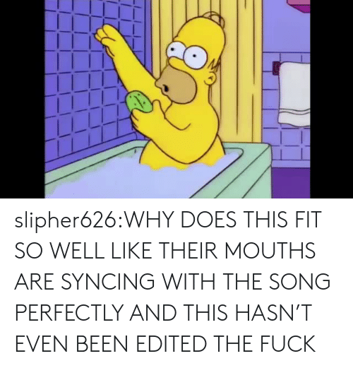 Tumblr, Blog, and Fuck: slipher626:WHY DOES THIS FIT SO WELL LIKE THEIR MOUTHS ARE SYNCING WITH THE SONG PERFECTLY AND THIS HASN'T EVEN BEEN EDITED THE FUCK