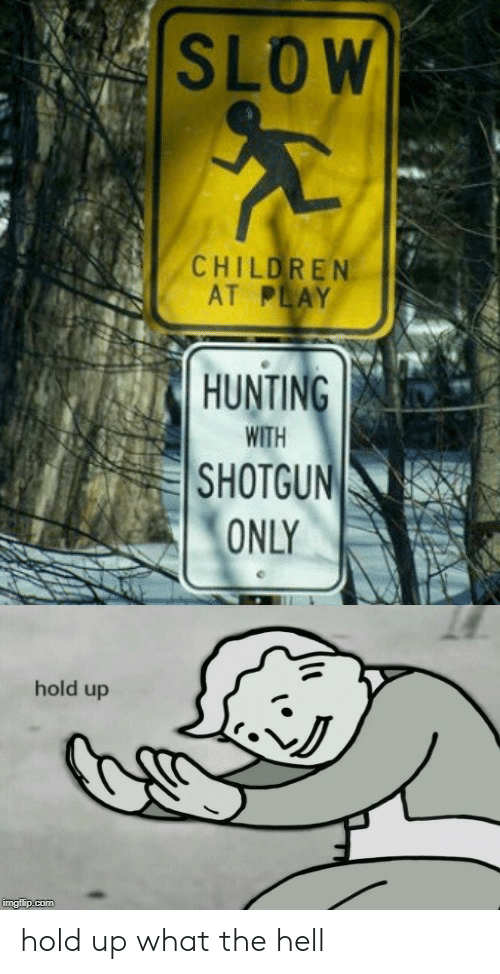 shotgun: SLOW  CHILDREN  AT PLAY  HUNTING  WITH  SHOTGUN  ONLY  hold up  imgflip.com hold up what the hell