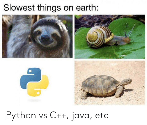 Earth, Java, and Python: Slowest things on earth: Python vs C++, java, etc