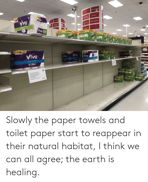 think: Slowly the paper towels and toilet paper start to reappear in their natural habitat, I think we can all agree; the earth is healing.