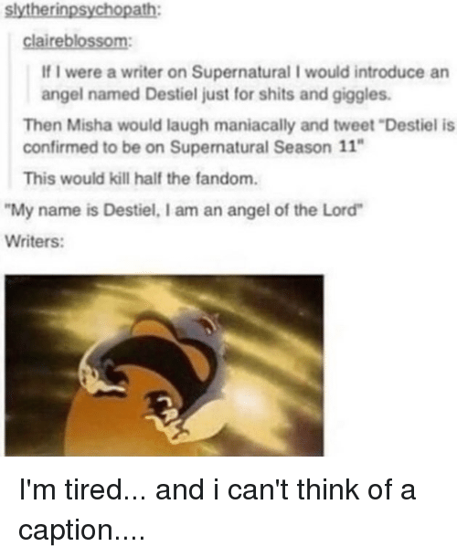 """season 11: slytherinpsychopath:  claireblossom:  If I were a writer on Supernatural I would introduce an  angel named Destiel just for shits and giggles  Then Misha would laugh maniacally and tweet """"Destiel is  confirmed to be on Supernatural Season 11""""  This would kill half the fandom.  My name is Destiel, I am an angel of the Lord  Writers: I'm tired... and i can't think of a caption...."""