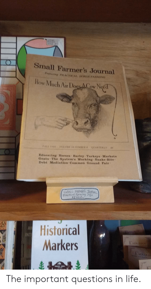 Small Farmer's Journal Bturing PRACTICCAL HORSE PARMING Low Much Air