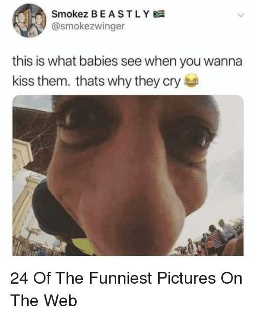 Kiss, Pictures, and Beastly: Smokez BEASTLY  @smokezwinger  this is what babies see when you wanna  kiss them. thats why they cry 24 Of The Funniest Pictures On The Web
