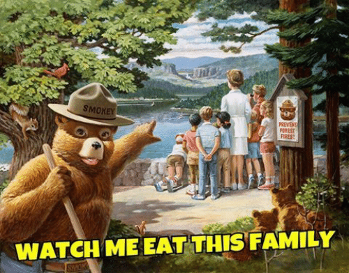 watch me: SMOXEY  FOREST  FIRES  WATCH ME EAT THIS FAMILY