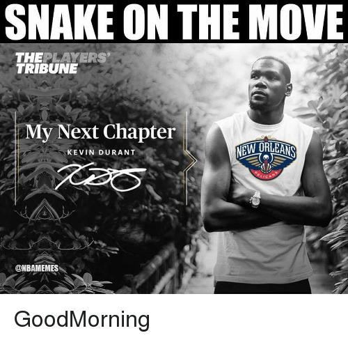 Kevin Durant, Nba, and Snake: SNAKE ON THE MOVE  THEPLAYERS  My Next Chapter  KEVIN DURANT  @NBAMEMES GoodMorning