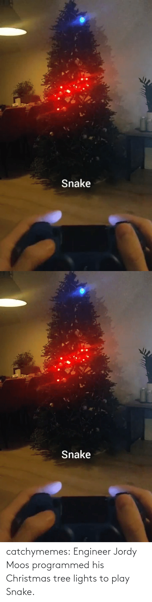 engineer: Snake   Snake catchymemes:  Engineer Jordy Moos programmed his Christmas tree lights to play Snake.