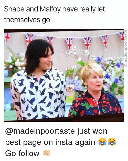 Wonned: Snape and Malfoy have really let  themselves go @madeinpoortaste just won best page on insta again 😂😂 Go follow 👊🏼