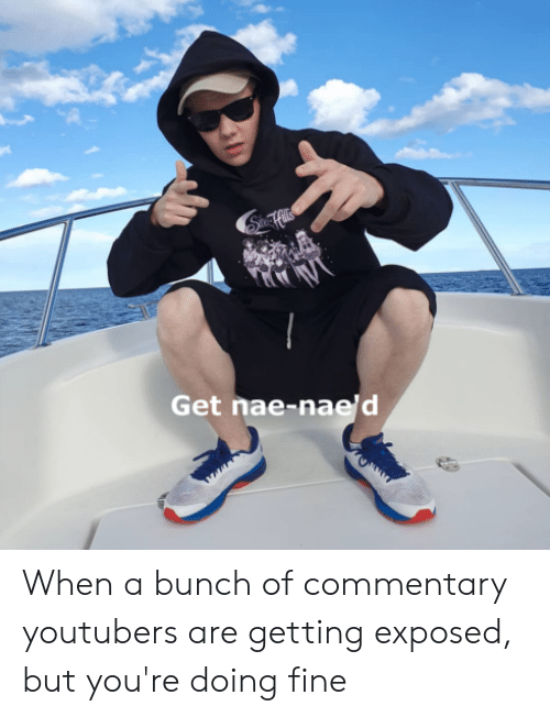 Fine, Get, and Youre: SnHils  Get nae-nae'd When a bunch of commentary youtubers are getting exposed, but you're doing fine