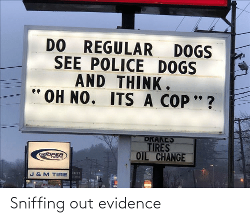 evidence: Sniffing out evidence