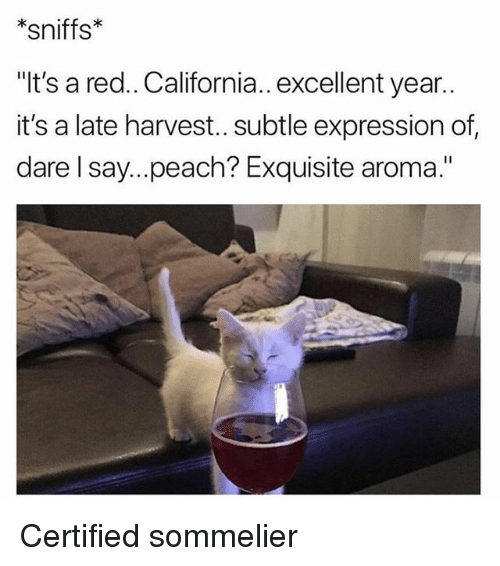 "Funny, California, and Red: *sniffs*  ""It's a red.. California.. excellent year..  it's a late harvest.. subtle expression of  dare l say...peach? Exquisite aroma."" Certified sommelier"