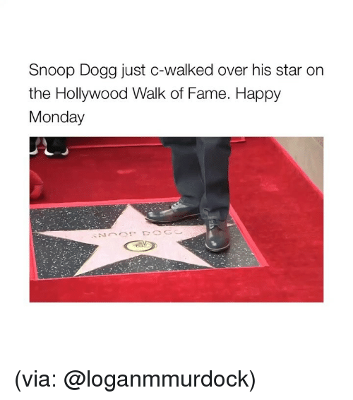 Snoop, Snoop Dogg, and Happy: Snoop Dogg just c-walked over his star or  the Hollywood Walk of Fame. Happy  Monday (via: @loganmmurdock)