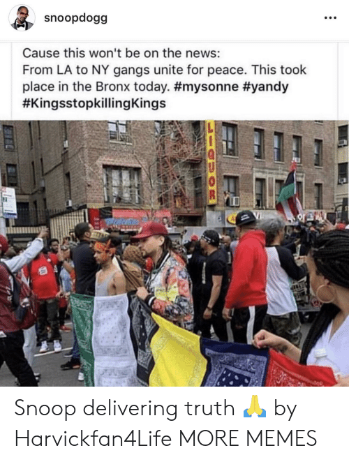 Dank, Memes, and News: snoopdogg  Cause this won't be on the news:  From LA to NY gangs unite for peace. This took  place in the Bronx today. Snoop delivering truth 🙏 by Harvickfan4Life MORE MEMES