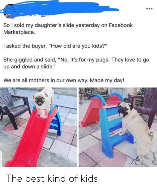 "Facebook, Love, and Best: So I sold my daughter 's slide yesterday on Facebook  Marketplace.  I asked the buyer, ""How old are you kids?""  She giggled and said, ""No, it's for my pugs. They love to go  up and down a slide.""  We are all mothers in our own way. Made my day! The best kind of kids"