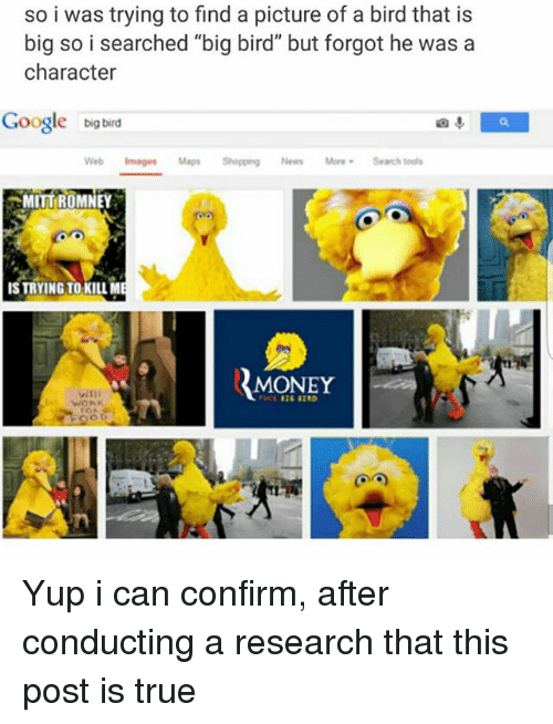 """Confirmated: so i was trying to find a picture of a bird that is  big so i searched """"big bird"""" but forgot he was a  character  Google big bird  Web Images Maps Shopping News MoreSearch tools  MITT{ROMNEY  IS TRYING TO KILLM  MONEY Yup i can confirm, after conducting a research that this post is true"""