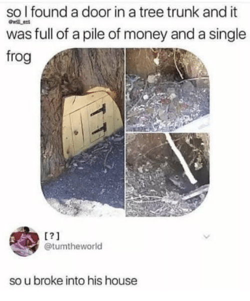 Money, House, and Tree: so l found a door in a tree trunk and it  was full of a pile of money and a single  frog  wil en  1?1  etumtheworld  so u broke into his house