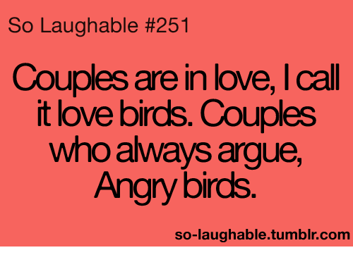 love bird: So Laughable #251  Couples are in love, l call  it love birds. Couples  who always argue,  Angry birds  so-laughable tumblr com