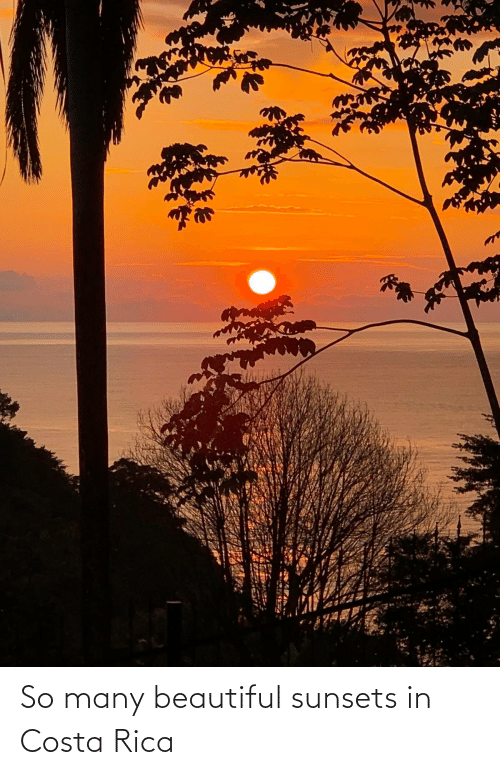 costa: So many beautiful sunsets in Costa Rica